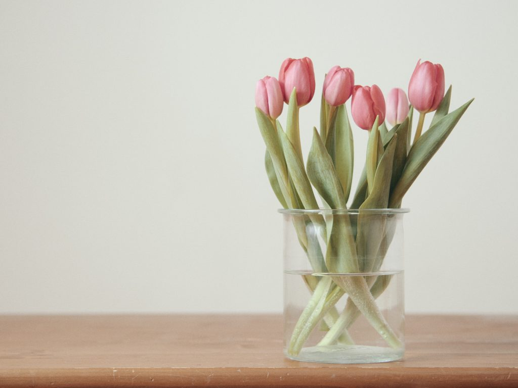 pink tulips on brown wooden table